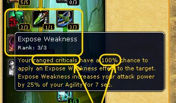 armory-expose-weakness