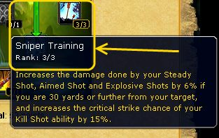 armory-sniper-training